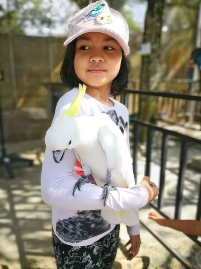 EyeEm Selects Bird Holding Bird Petting Bird Portrait Child Childhood Girls Looking At Camera Smiling Standing Cute Front View Happiness Cap Hat