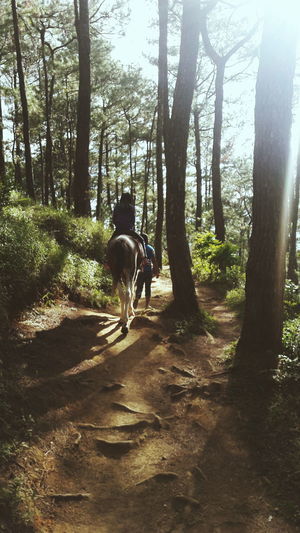 Showcase: January Adventures Cousin Taking Photos Photography Horse Riding Baguio City, Philippines