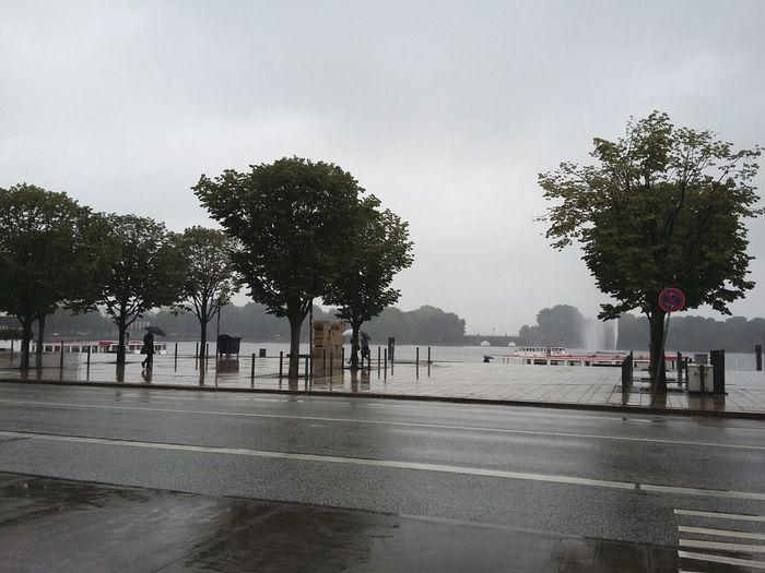 Rain. · Hamburg Germany 040 Alster Binnenalster Rain☔ Rainy Day Trees Wet Tristesse Gray Gray Day Gray Sky