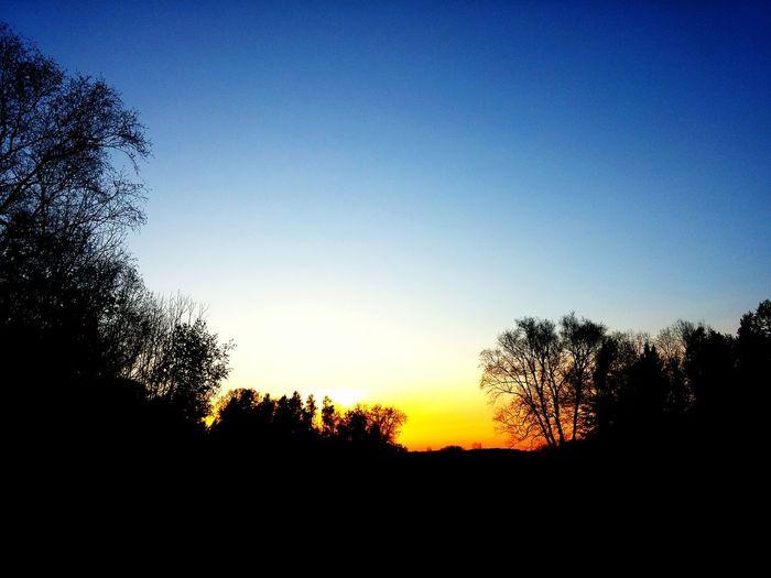 Sunset on the Farm...beautiful evening! Ilovesunrisesandsunsets Godsbeauty Silhouette Skywatcher Nature Warmerdays Light And Shadow Rural America Blue Wave