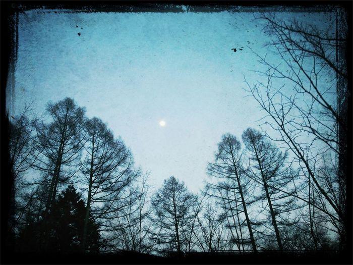 Moon Travel Just Chillin' Skyporn