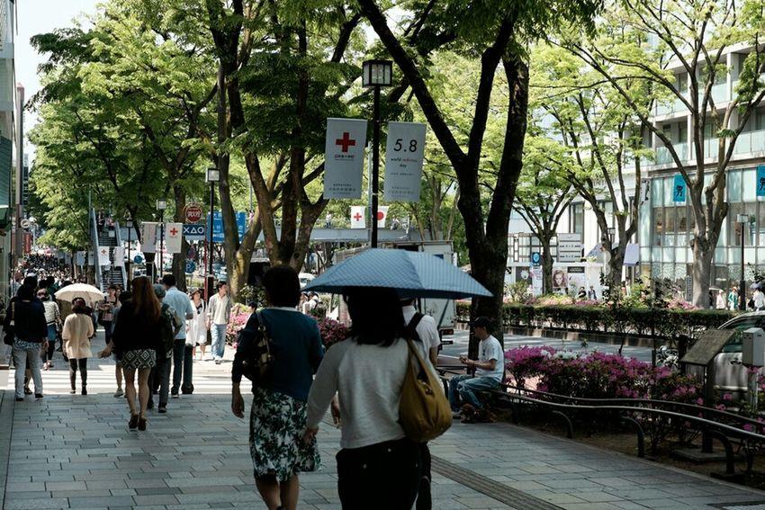 表参道にて Walking Around Fujixe2 Fujifilm_xseries Fujifilm Fujifilm X-E2 Fujifilmxe2 Xf35 表参道 Tokyo Japan