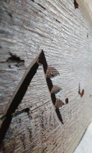 Wood Macro