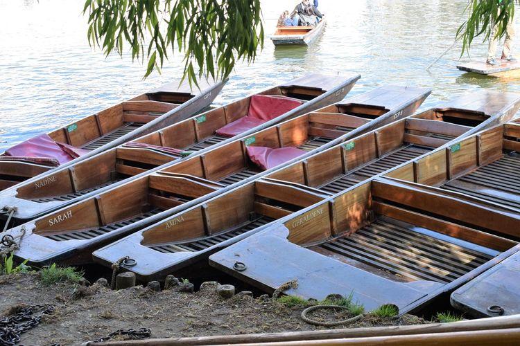 Boat Calm Cambridge Punting River Cam Ships Sun Transportation Tree Water Waterways