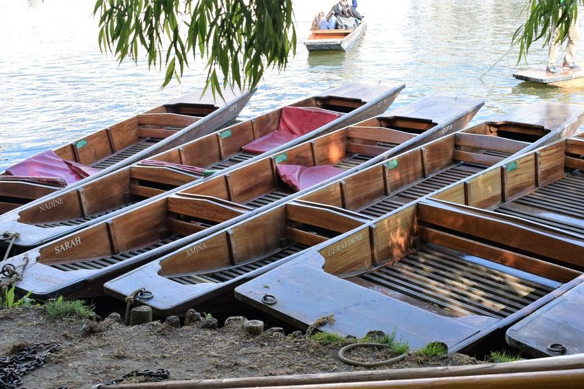 Boat Calm Cambridge Punting River Cam Ships Sun Transportation Tree Water Waterways