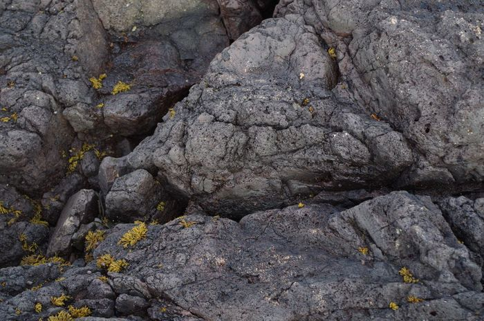 Nature Beach Beachphotography Beauty In Nature Close-up Grey Stone In Nature  Lava Nature No People Outdoors Rock - Object Rock Formation Stones In The Sea Stones In The Water Volcano Volcano Stone