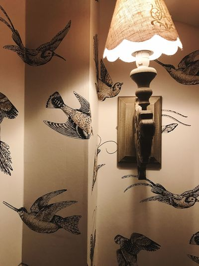 Electric Lamp Indoors  Hanging Home Interior No People Close-up Day Light Light And Shadow Birds
