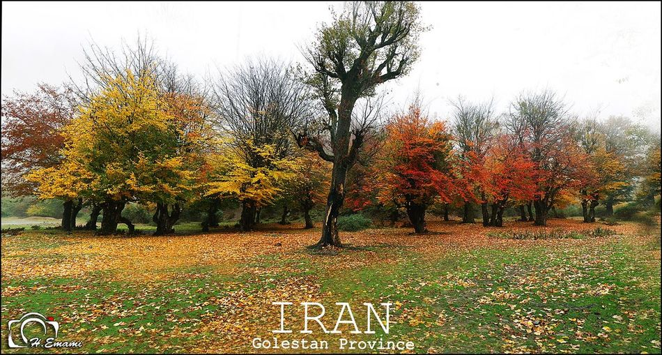 Iran Nature Iran autumn fall