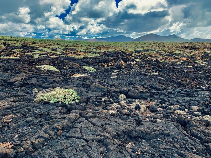Landscape_photography Lava Rocks Lanzarote Island El Golfo Lanzarote Landscape Cloud - Sky Sky Environment Nature Landscape Land Day Field No People Outdoors Non-urban Scene Mountain