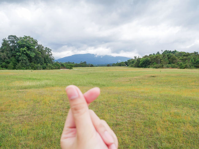 Human Hand Human Body Part Cloud - Sky Tree One Person Nature Sky Agriculture People Day Growth Rural Scene Only Men Beauty In Nature Adult Outdoors One Man Only Freshness Adults Only Defocused Travel Photography Kaoyai