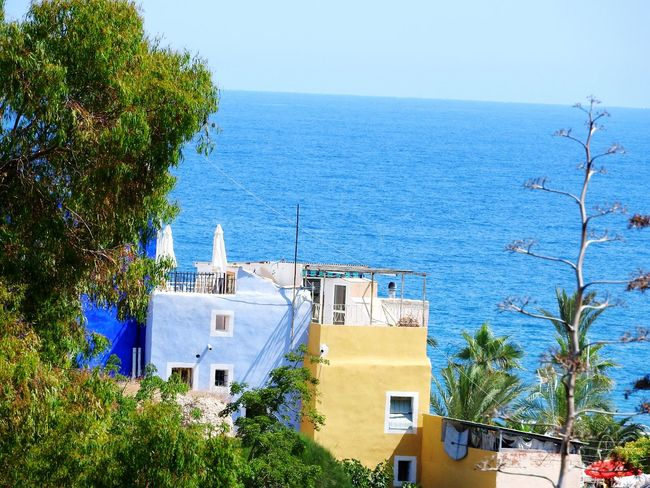 Room With A View ~ Architecture Tree Built Structure Building Exterior Sea Day Outdoors No People Nature Sky Blue Water Whitewashed Horizon Over Water Beauty In Nature City Mediterranean  Villajoyosa SPAIN Sea View Sisal Tree Painted Houses Freshness Ocean View Best View Of The World
