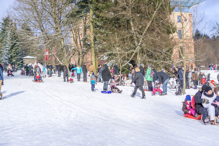 Adult City Cold Temperature Day Ice Rink Ice Skate Large Group Of People Leisure Activity Outdoors People Real People Snow Travel Destinations Tree Winter Winter Sport