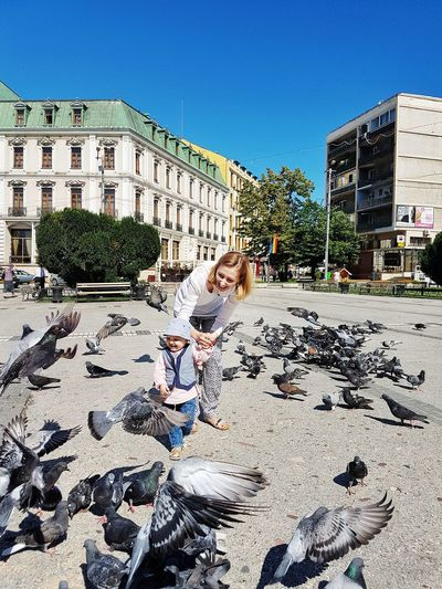 Mother Holding Hands Of Cute Toddler Daughter While Standing Amidst Pigeons At Town Square