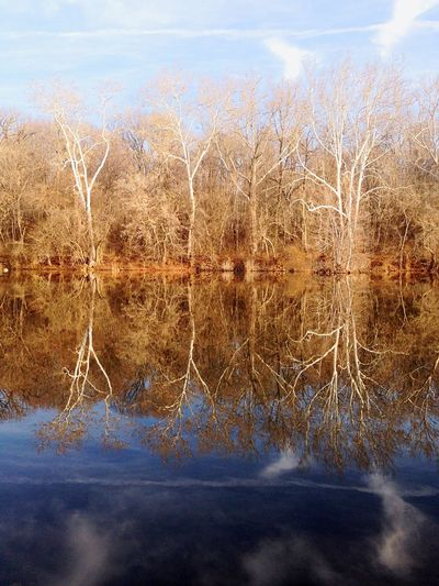 Reflections on C&O canal MD Explore Wood A Walk In The Woods Maryland MDinFocus