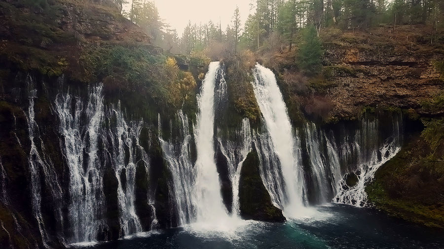 Burney Falls in northern California Beauty In Nature Burney Falls Day Flowing Water Forest Motion Nature No People Outdoors Scenics Tranquil Scene Travel Destinations Tree Water Waterfall