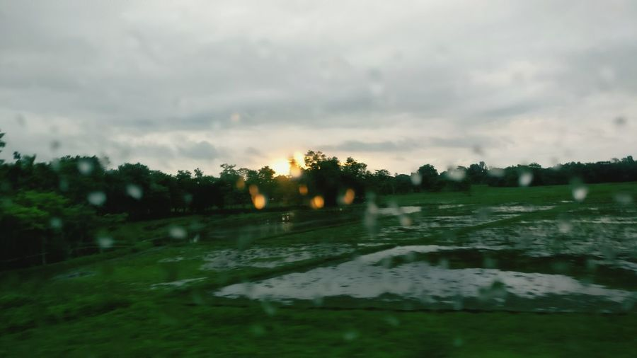 Sunrise Sunrise Rain Rain Rain&sunrise Dewdrop Dewdrop On Window