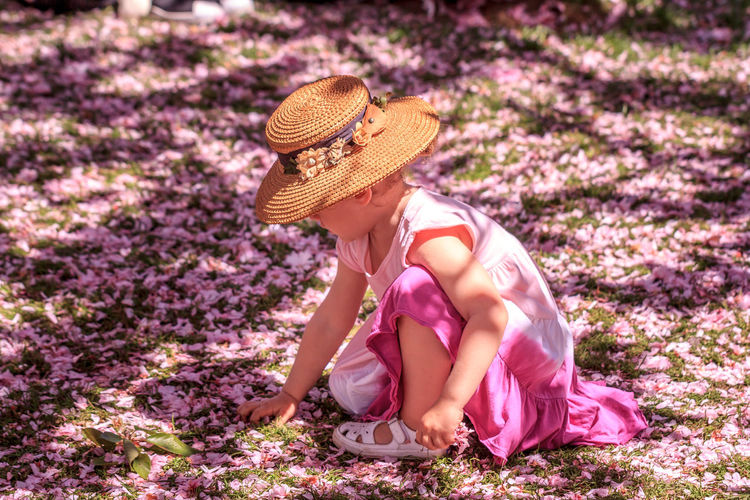 A young girl picks cherry blossom petals off the ground at the Brooklyn Botanical Garden. Beauty In Nature Cherry Blossoms Dress Elementary Age Flower Full Length Girl Grass Hat Innocence Little Girl Nature One Person Outdoor Outdoors Petals Picking Pink Pink Color Pink Flower Real People Sitting Sun Hat Young Girl