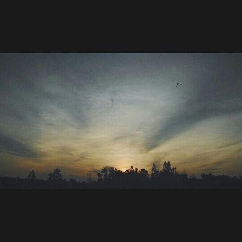 Bila sunset datang....🌲🌴🌳😁😀 Nn Haveaniceday Malaysia Sabah HaveFun Barulagini BeGood