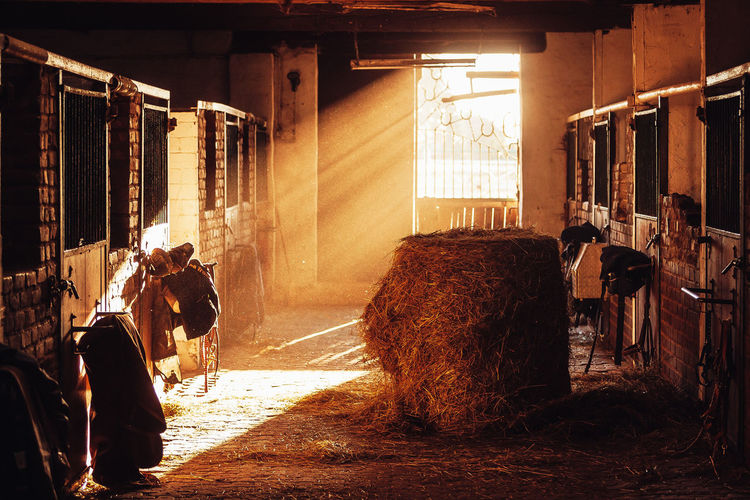 Interior of stable during sunset