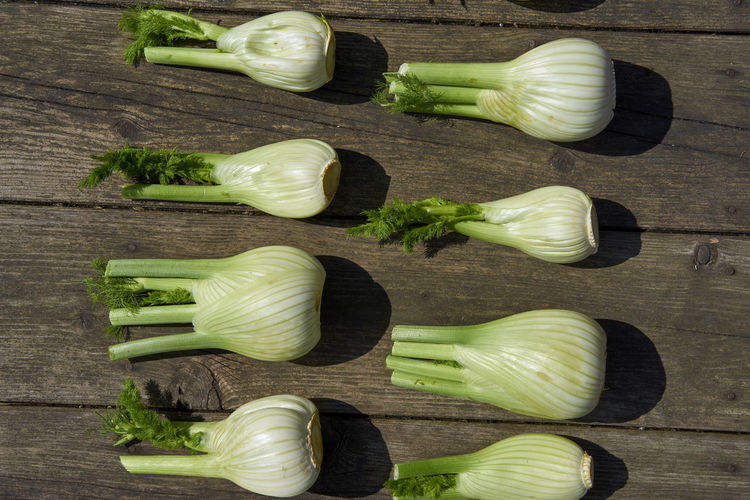 Close-up of fennel on wooden table