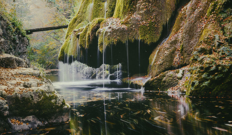 Beauty In Nature Day Flowing Flowing Water Forest Lake Long Exposure Motion Nature No People Outdoors Plant Power In Nature Rainforest Reflection Rock Rock - Object Rock Formation Scenics - Nature Solid Tree Water Waterfall Waterfront