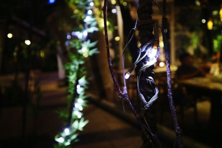 Close-up of christmas decoration hanging on tree at night