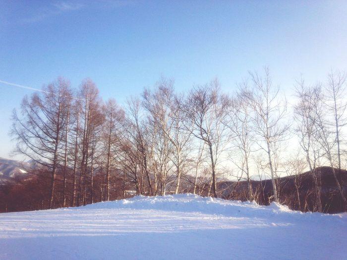 Still enjoying the Wintertime. Skiing Enjoying Life 片品高原スキー場 Japan