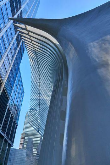 New York Oculus