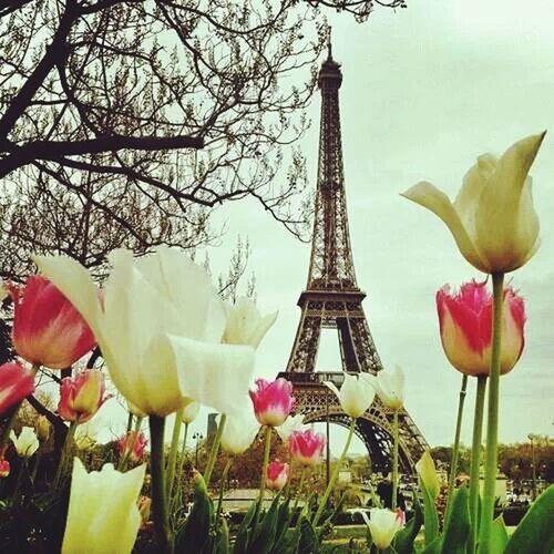 Paris ?