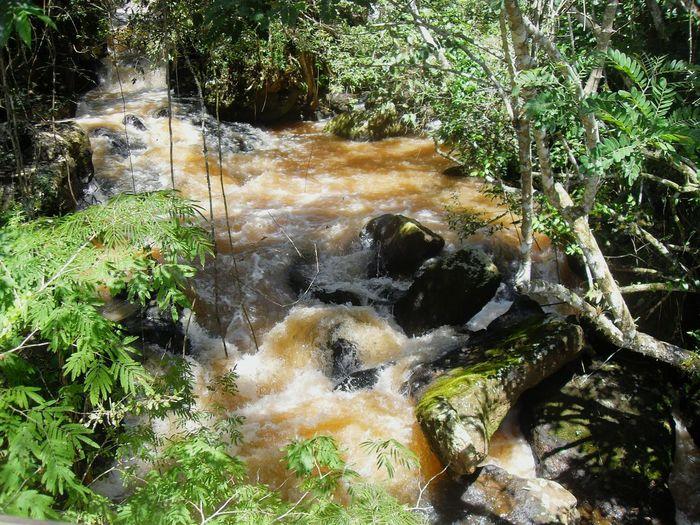 Waterfalls No