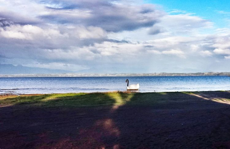 Llanquihue Landscape_Collection Eyem Best Shots Eyemgallery MyPhotography Eyemtravel Loqueveo Lugaresconencanto Lugares Magicos Landscape