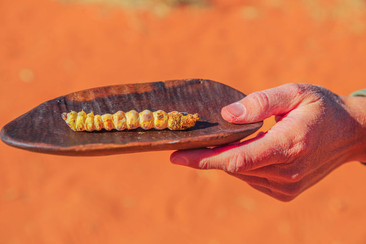 Close-up of hand holding meat against orange background