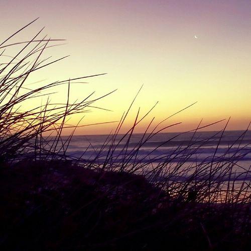 Summer Western Australia Geraldton Beach Sunset Beautiful Sea Colour