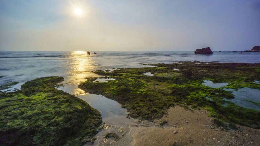 the sunset in Karang Suraga beach in Banten coastline Portfolio Of Arif Wibowo Photograph By Jgawibowo Portfolio Of Jgawibowo Photography By Jgawibowo Nature Landscape Clouds And Sky Long Exposure Rocky Coastline Reflection Water Nautical Vessel Sea Tree Beach Sunset Low Tide Sand Wave Seascape Reef Coral Coastal Feature Sailing Clown Fish Soft Coral
