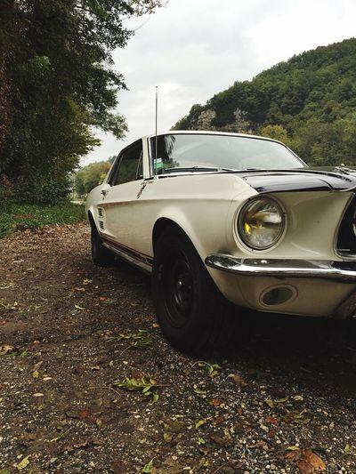 Stang' Mustang First Eyeem Photo