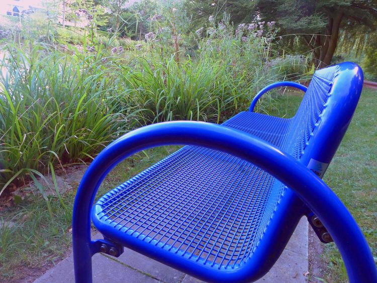 Rundgang durch den Kurpark von Bad Sassendorf Absence Bad Sassendorf Bench Blue Blue Bench Empty Grass Kurpark  Metal Nature Seat Tranquility