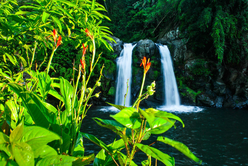 capturing our Mother Earth's beautyNature Philippines Nikonphotography Falls Nature Photography Traveller