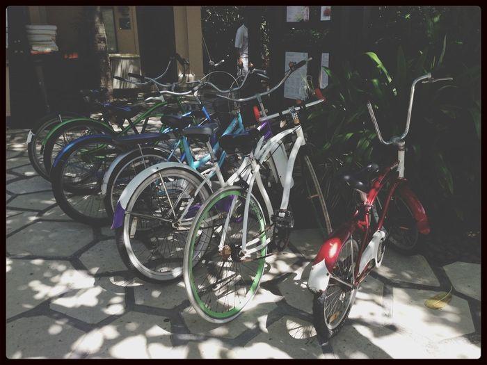 Cycling Around Bali Bali Throwback