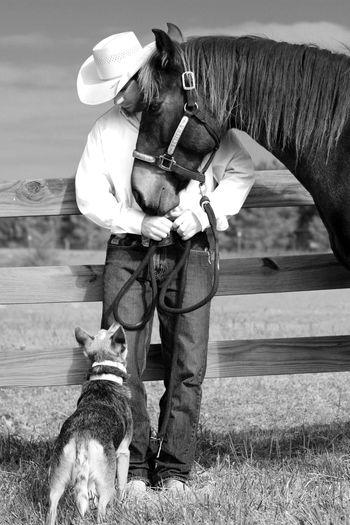 Cowboy with dog and horse at ranch