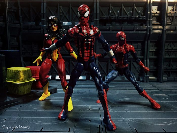 Group shot of my mini Spiderverse collection. Toyphotography Toycommunity Marvellegends Marvellegendscommunity Hasbrotoys Toysaremydrug Marvellegendsphotography Marvellegendscrew Marvellegendsfigures Hasbromarvellegends Marvellegendscollector Spider-man Spiderwoman