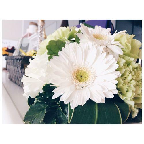昨日は大好きな大親友の披露宴☆幸せオーラ満開で幸せになりました♡幸せのお裾分けのお花♡♡ Wedding Flowers Gerbera ガーベラ 希望 花言葉 Happy