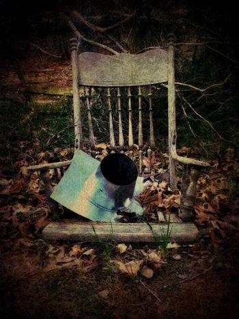 Into The Woods Rurex Is This Seat Taken? EyeEm Nature Lover