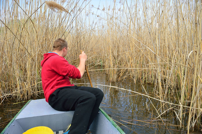 Reeds At The Lake Boat Fisherman Human Body Part Nature One Person Outdoors Reeds Water