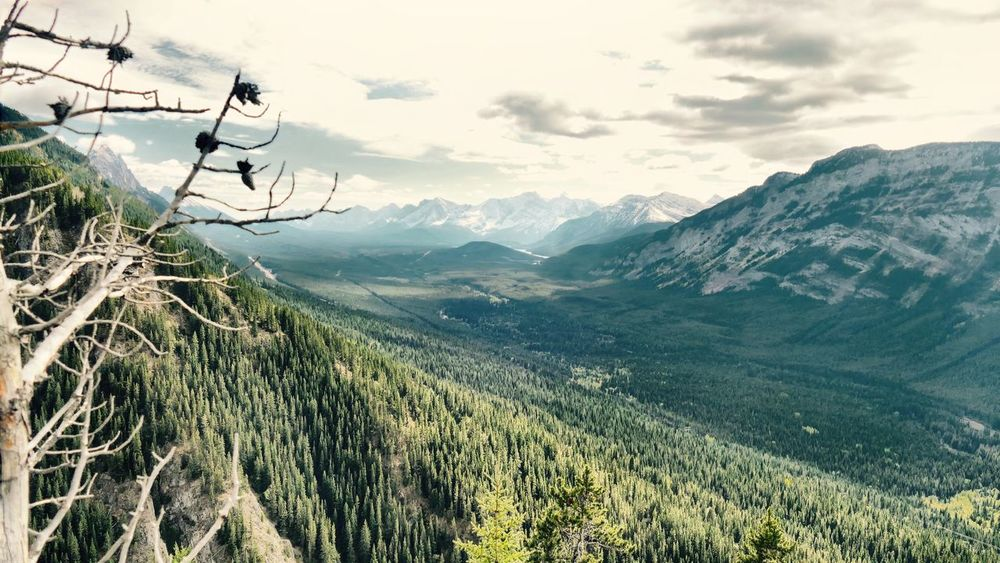 EyeEm Selects View southwest from part-way up Grizzly. Landscape Mountain Range No People Autumn Softwood Mountain Valley Highway 40 Hiking Beauty In Nature Scenics Outdoors