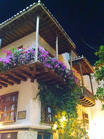 Balcons Flowers Morado