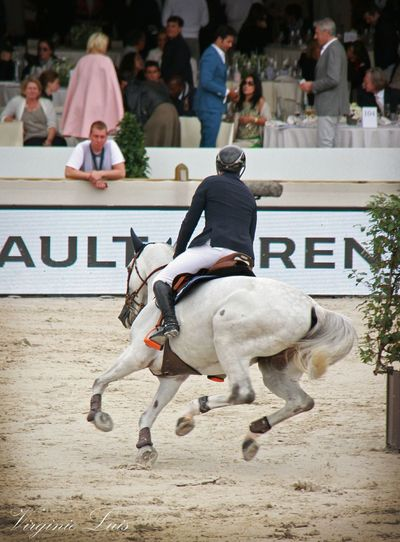 Horse Horses Horse Riding Horse Photography  Horse Life Horse Jumping Competition Horse Jumping Horse Jump Jumping Jumping Shot Chevaux Cheval Photography Photo Domestic Animals