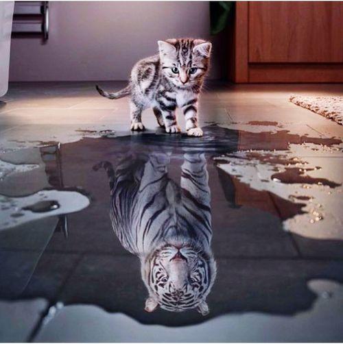 Perspective & Ambition.... Motivationmonday