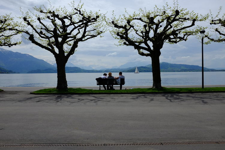 Friends Sitting On Park Bench Amidst Trees Against Lake