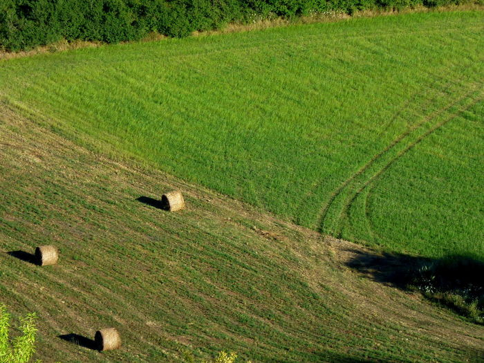 View on sunny fields with hay bales, calascio, abruzzo, italy