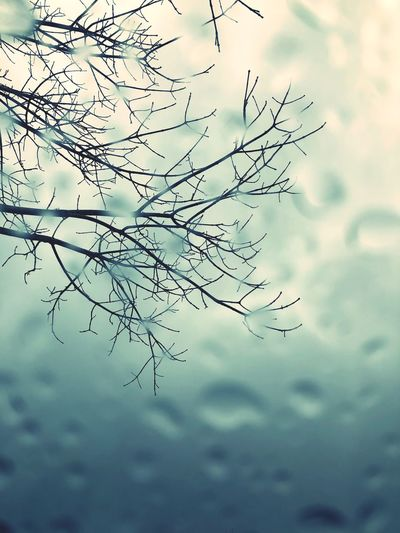 Raining Reflections Life Outside Photography Rainy Days No People Water Day Nature Close-up Outdoors Sky Beauty In Nature